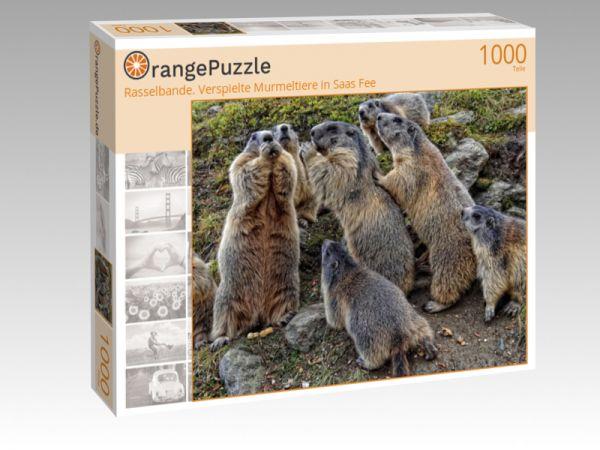 """Puzzle Motiv """"Rasselbande. Verspielte Murmeltiere in Saas Fee"""" - Puzzle-Schachtel zu 1000 Teile Puzzle"""
