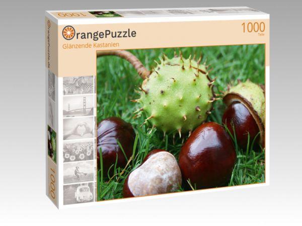 """Puzzle Motiv """"Glänzende Kastanien"""" - Puzzle-Schachtel zu 1000 Teile Puzzle"""