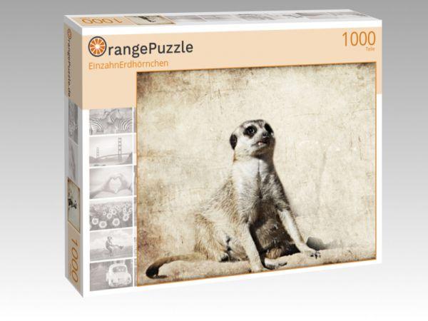 """Puzzle Motiv """"EinzahnErdhörnchen"""" - Puzzle-Schachtel zu 1000 Teile Puzzle"""
