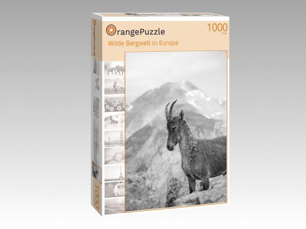 """Puzzle Motiv """"Wilde Bergwelt in Europa"""" - Puzzle-Schachtel zu 1000 Teile Puzzle"""