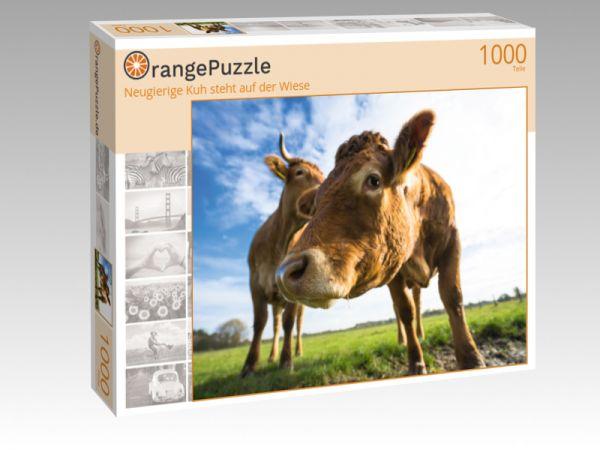 """Puzzle Motiv """"Neugierige Kuh steht auf der Wiese"""" - Puzzle-Schachtel zu 1000 Teile Puzzle"""