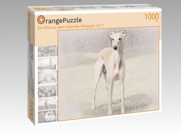"""Puzzle Motiv """"Ein Bild aus dem Kalender Whippets 2017"""" - Puzzle-Schachtel zu 1000 Teile Puzzle"""