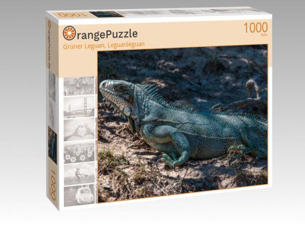 """Puzzle Motiv """"Grüner Leguan, Leguanleguan"""" - Puzzle-Schachtel zu 1000 Teile Puzzle"""