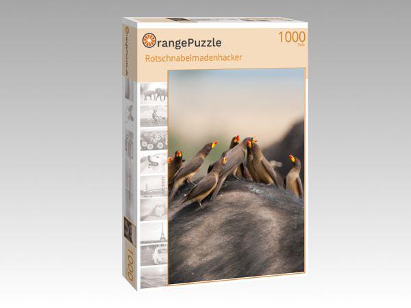 """Puzzle Motiv """"Rotschnabelmadenhacker"""" - Puzzle-Schachtel zu 1000 Teile Puzzle"""