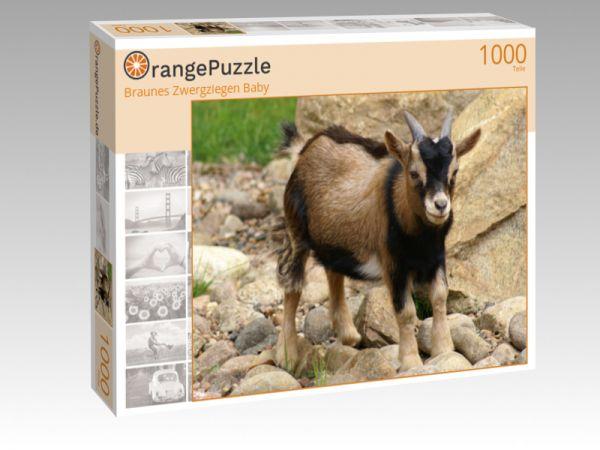 """Puzzle Motiv """"Braunes Zwergziegen Baby"""" - Puzzle-Schachtel zu 1000 Teile Puzzle"""