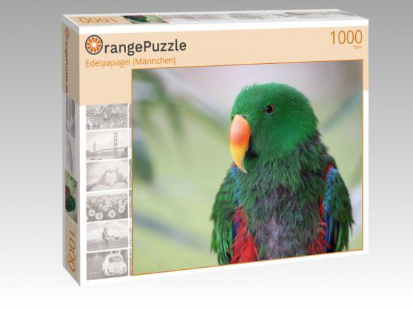 "Puzzle Motiv ""Edelpapagei (Männchen)"" - Puzzle-Schachtel zu 1000 Teile Puzzle"
