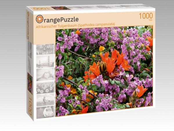 "Puzzle Motiv ""Afrikanischer Tulpenbaum (Spathodea campanulata)"" - Puzzle-Schachtel zu 1000 Teile Puzzle"