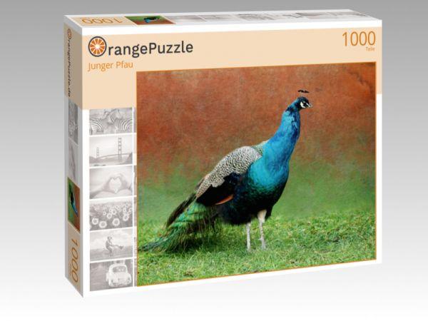 """Puzzle Motiv """"Junger Pfau"""" - Puzzle-Schachtel zu 1000 Teile Puzzle"""