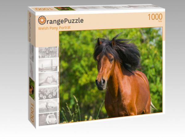 """Puzzle Motiv """"Welsh Pony Porträt"""" - Puzzle-Schachtel zu 1000 Teile Puzzle"""