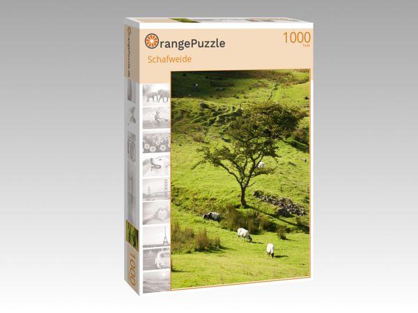 """Puzzle Motiv """"Schafweide"""" - Puzzle-Schachtel zu 1000 Teile Puzzle"""