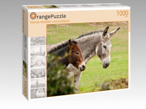 """Puzzle Motiv """"Kleines Maultier und Großesel"""" - Puzzle-Schachtel zu 1000 Teile Puzzle"""