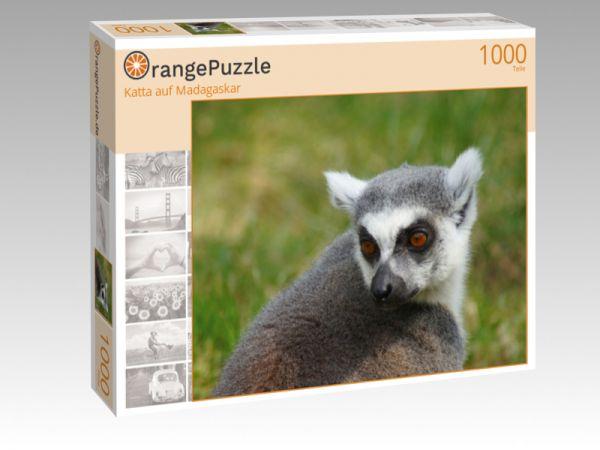 "Puzzle Motiv ""Katta auf Madagaskar"" - Puzzle-Schachtel zu 1000 Teile Puzzle"