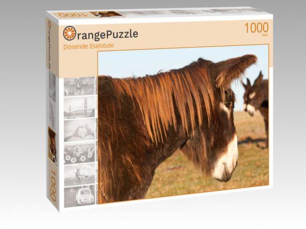 """Puzzle Motiv """"Dösende Eselstute"""" - Puzzle-Schachtel zu 1000 Teile Puzzle"""