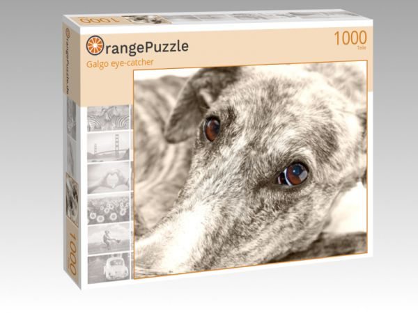 "Puzzle Motiv ""Galgo eye-catcher"" - Puzzle-Schachtel zu 1000 Teile Puzzle"