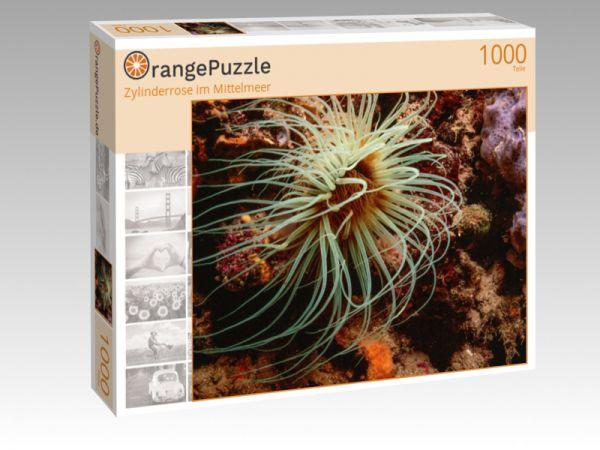 """Puzzle Motiv """"Zylinderrose im Mittelmeer"""" - Puzzle-Schachtel zu 1000 Teile Puzzle"""