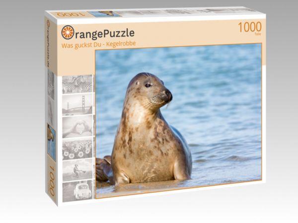 "Puzzle Motiv ""Was guckst Du - Kegelrobbe"" - Puzzle-Schachtel zu 1000 Teile Puzzle"