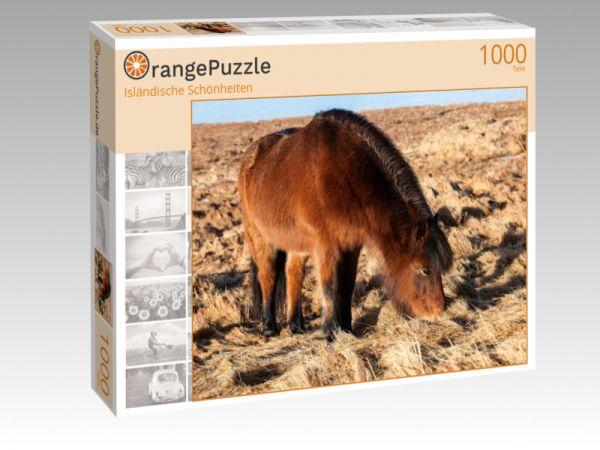 """Puzzle Motiv """"Isländische Schönheiten"""" - Puzzle-Schachtel zu 1000 Teile Puzzle"""