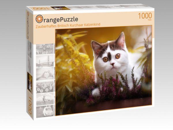 """Puzzle Motiv """"Zauberhaftes Britisch Kurzhaar Katzenkind"""" - Puzzle-Schachtel zu 1000 Teile Puzzle"""