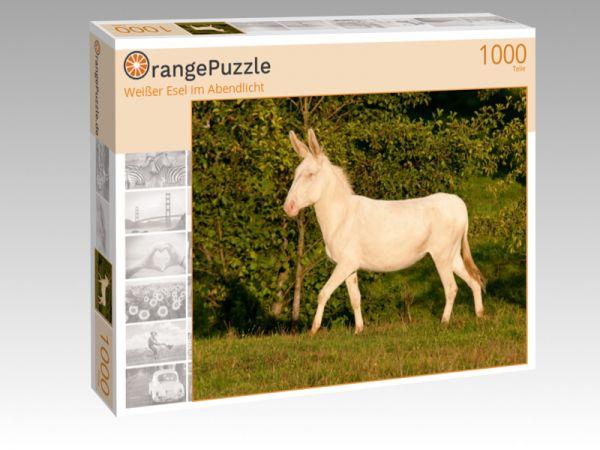 """Puzzle Motiv """"Weißer Esel im Abendlicht"""" - Puzzle-Schachtel zu 1000 Teile Puzzle"""