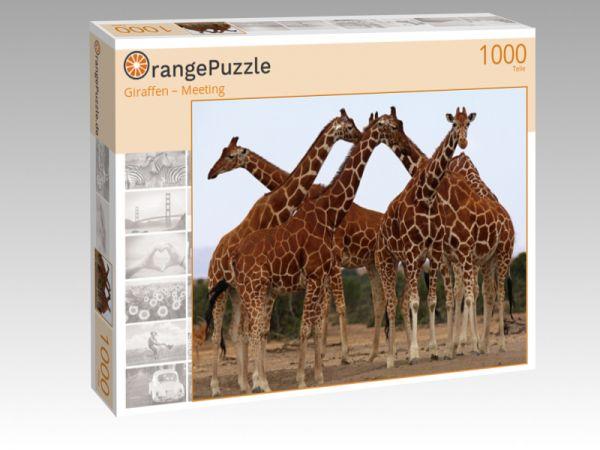 """Puzzle Motiv """"Giraffen – Meeting"""" - Puzzle-Schachtel zu 1000 Teile Puzzle"""