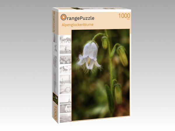 """Puzzle Motiv """"Alpenglockenblume"""" - Puzzle-Schachtel zu 1000 Teile Puzzle"""