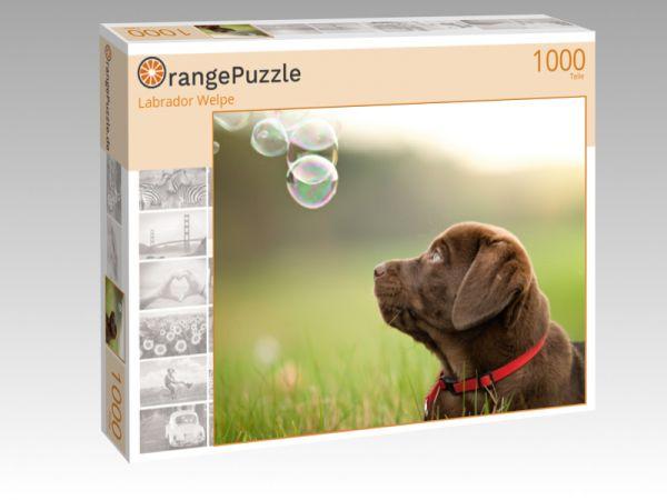 """Puzzle Motiv """"Labrador Welpe"""" - Puzzle-Schachtel zu 1000 Teile Puzzle"""