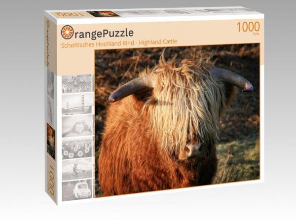"""Puzzle Motiv """"Schottisches Hochland Rind - Highland Cattle"""" - Puzzle-Schachtel zu 1000 Teile Puzzle"""