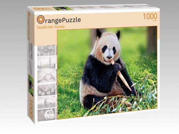 "Puzzle Motiv ""Niedlicher Panda"" - Puzzle-Schachtel zu 1000 Teile Puzzle"