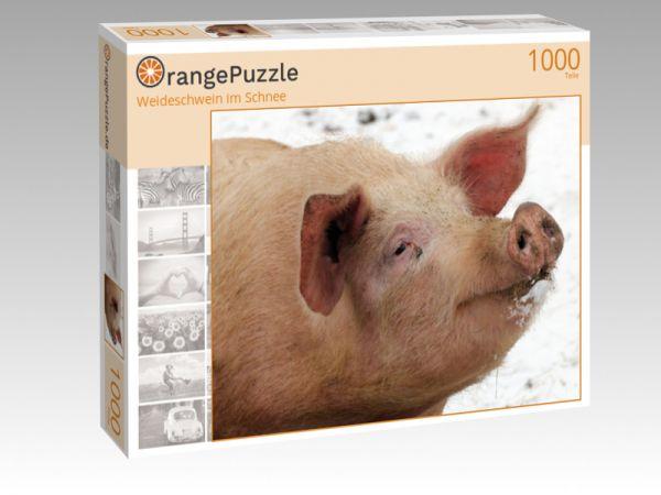 """Puzzle Motiv """"Weideschwein im Schnee"""" - Puzzle-Schachtel zu 1000 Teile Puzzle"""