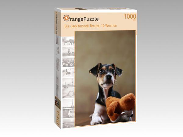 "Puzzle Motiv ""Liu - Jack Russell-Terrier, 10 Wochen"" - Puzzle-Schachtel zu 1000 Teile Puzzle"