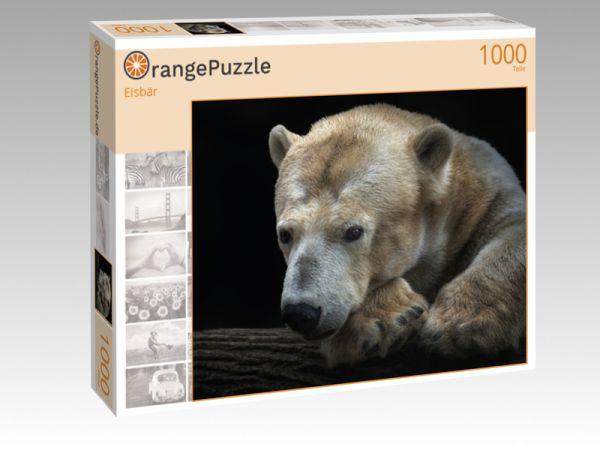 "Puzzle Motiv ""Eisbär"" - Puzzle-Schachtel zu 1000 Teile Puzzle"