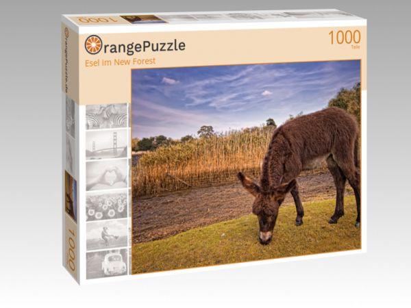 """Puzzle Motiv """"Esel im New Forest"""" - Puzzle-Schachtel zu 1000 Teile Puzzle"""