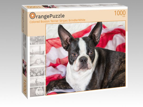"Puzzle Motiv ""Colored Boston Terrier Stripes Brindle/White"" - Puzzle-Schachtel zu 1000 Teile Puzzle"