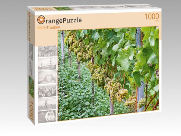 """Puzzle Motiv """"Reife Trauben"""" - Puzzle-Schachtel zu 1000 Teile Puzzle"""