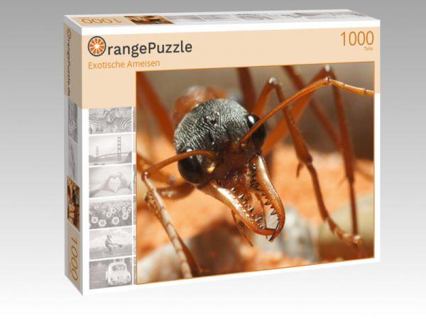 """Puzzle Motiv """"Exotische Ameisen"""" - Puzzle-Schachtel zu 1000 Teile Puzzle"""