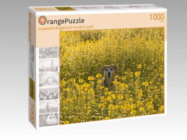 """Puzzle Motiv """"Azawakh-Ridgeback Hund in gelb"""" - Puzzle-Schachtel zu 1000 Teile Puzzle"""
