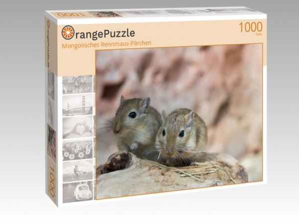 """Puzzle Motiv """"Mongolisches Rennmaus-Pärchen"""" - Puzzle-Schachtel zu 1000 Teile Puzzle"""