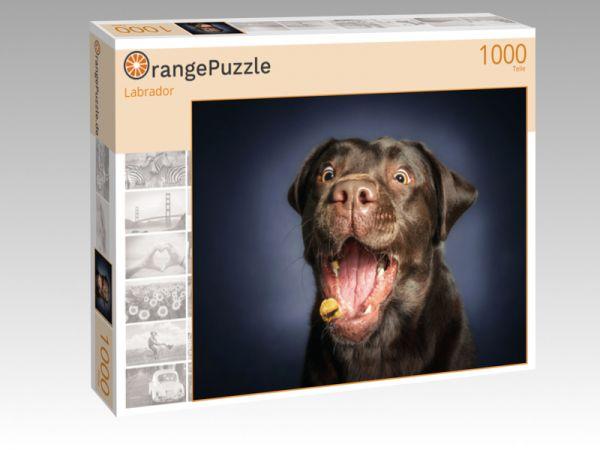 """Puzzle Motiv """"Labrador"""" - Puzzle-Schachtel zu 1000 Teile Puzzle"""