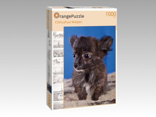"""Puzzle Motiv """"Chihuahua Welpen"""" - Puzzle-Schachtel zu 1000 Teile Puzzle"""