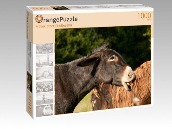 """Puzzle Motiv """"Mimik einer Großeselin"""" - Puzzle-Schachtel zu 1000 Teile Puzzle"""