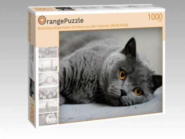"""Puzzle Motiv """"Britischkurzhaar Katze. Ein Motiv aus dem Kalender GRAUE ENGEL"""" - Puzzle-Schachtel zu 1000 Teile Puzzle"""