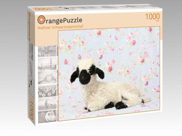 Puzzle Walliser Schwarznasenschaf Orangepuzzle Orangepuzzle