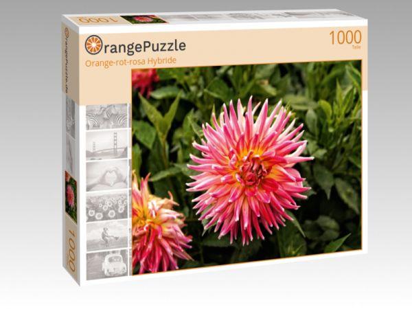 """Puzzle Motiv """"Orange-rot-rosa Hybride"""" - Puzzle-Schachtel zu 1000 Teile Puzzle"""