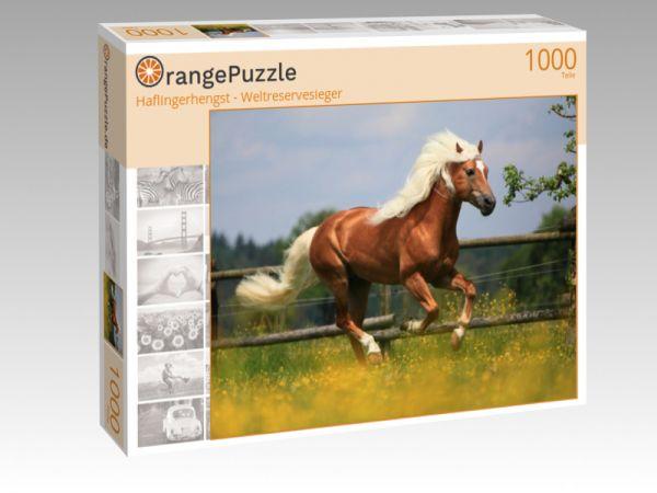 """Puzzle Motiv """"Haflingerhengst - Weltreservesieger"""" - Puzzle-Schachtel zu 1000 Teile Puzzle"""