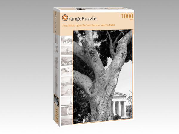 """Puzzle Motiv """"Ficus Nitida, Upper Barrakka Gardens, Valletta, Malta"""" - Puzzle-Schachtel zu 1000 Teile Puzzle"""