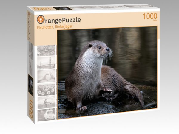 """Puzzle Motiv """"Fischotter, flinke Jäger"""" - Puzzle-Schachtel zu 1000 Teile Puzzle"""