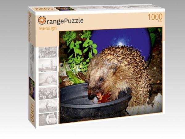 """Puzzle Motiv """""""" Meine Igel"""""""" - Puzzle-Schachtel zu 1000 Teile Puzzle"""