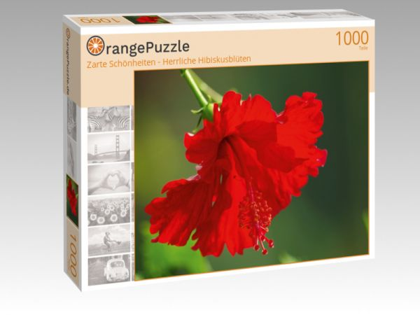 """Puzzle Motiv """"Zarte Schönheiten - Herrliche Hibiskusblüten"""" - Puzzle-Schachtel zu 1000 Teile Puzzle"""