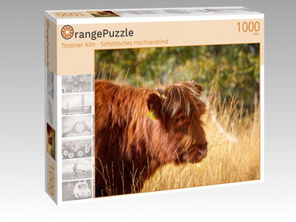 """Puzzle Motiv """"Tessiner Alm - Schottisches Hochlandrind"""" - Puzzle-Schachtel zu 1000 Teile Puzzle"""