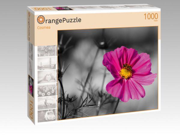 """Puzzle Motiv """"Cosmea"""" - Puzzle-Schachtel zu 1000 Teile Puzzle"""